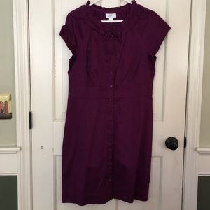 NWT Loft size 10 purple 100% cotton dress.